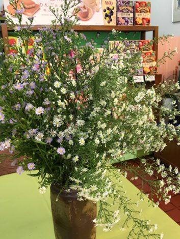 店内に 秋の花