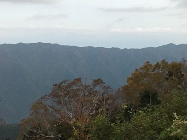 しらびそ高原の朝