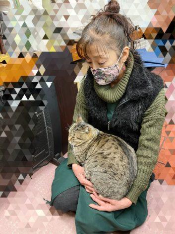 おばさまと猫?