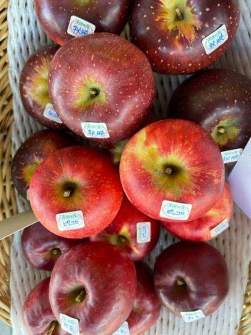 収穫の秋!南信州のりんごに酔う🍎